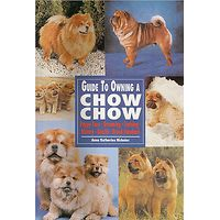 Chow Chow - Guide to Owning